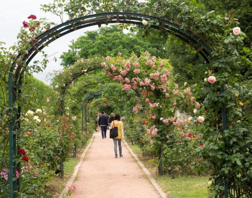jardin_paris.jpg
