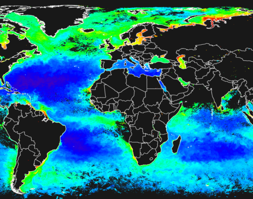 Neural networks are used to take account of cloud cover by the ESA Climate Change Initiative Ocean Colour project when generating global monthly composite maps of chlorophyll concentrations. This map shows concentrations for August 2018. Credit:  CCI/Ocean Colour project