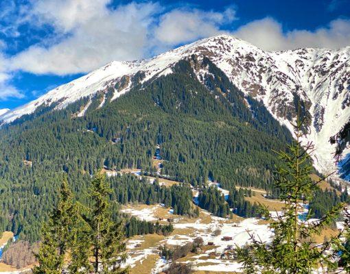 mountain-davos