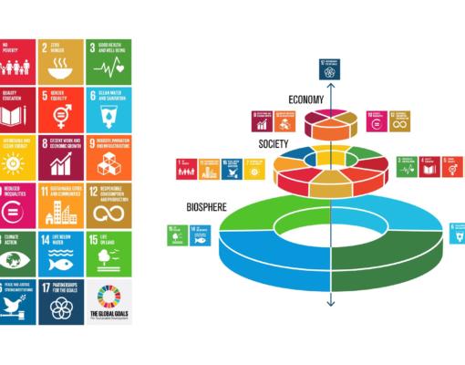 SDG models - standard and SRC