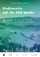 Cover image for Biodiversity and the 2030 Agenda report (English)